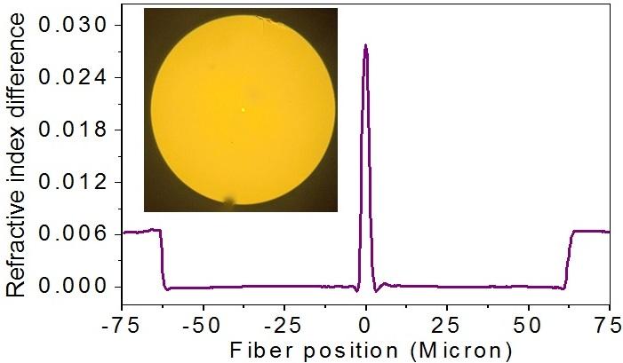 FBG based distributed feedback laser for sensor applications